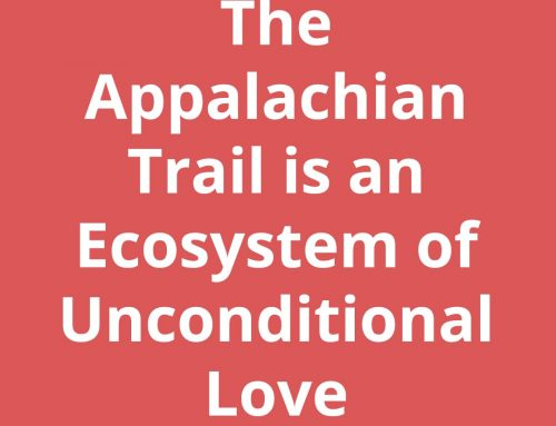 Hiking the AT – The Appalachian Trail is an Ecosystem of Unconditional Love
